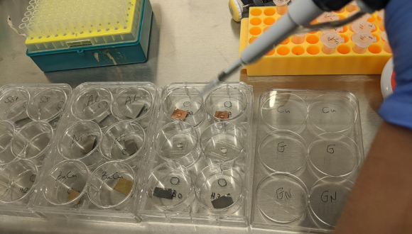 הנחת תרחיף הוירוס על משטחים שונים