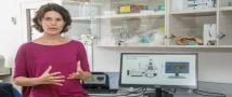 השילוב המנצח בין ביולוגיה, פיזיקה והנדסה