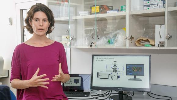 """ד""""ר איילת לסמן במעבדה לביומכניקה של תאים ורקמות"""