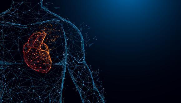 מה זה הנדסה ביו-רפואית ב 2020