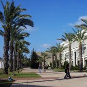 למה באוניברסיטת תל-אביב?