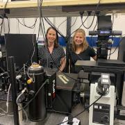 רוני ארליך וד״ר גילי ביסקר במעבדה האופטית